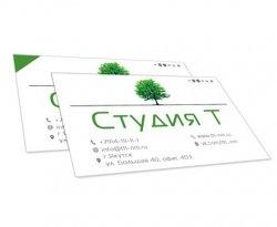 Студия Т - визитка [версия 1.0]